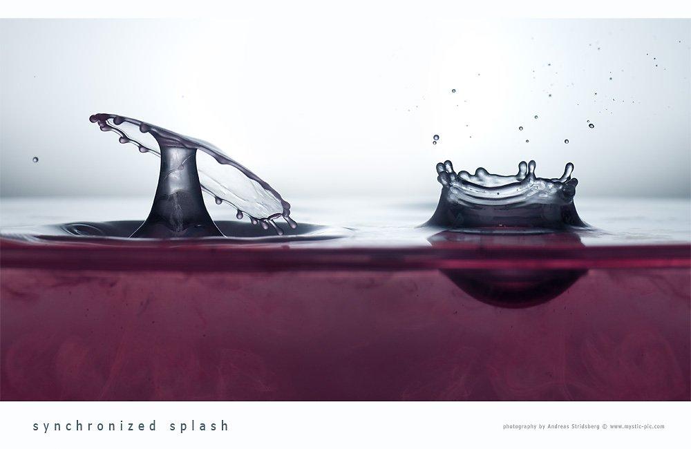 Splash-120102-264.jpg
