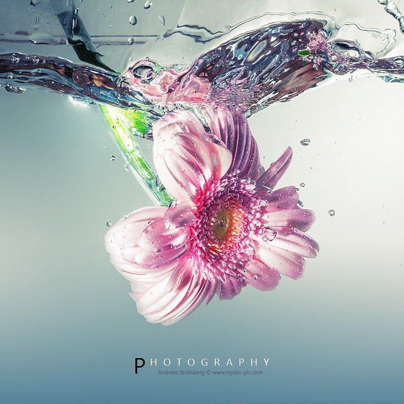 Splash-130419-016.jpg