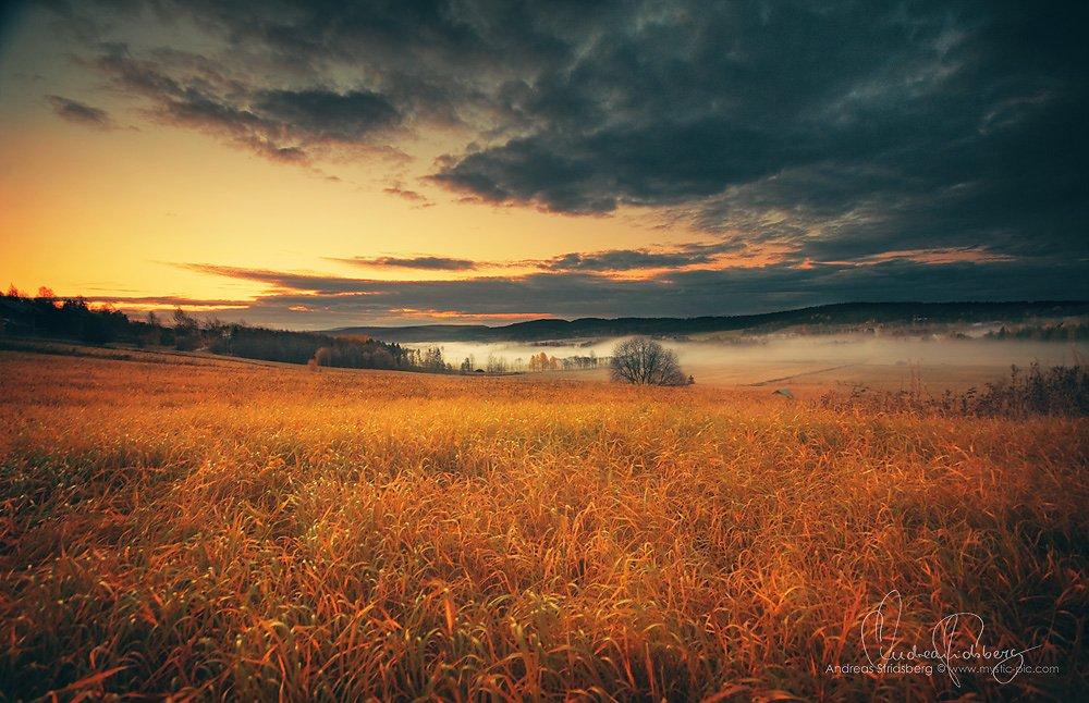 Sunrise-081014-002.jpg