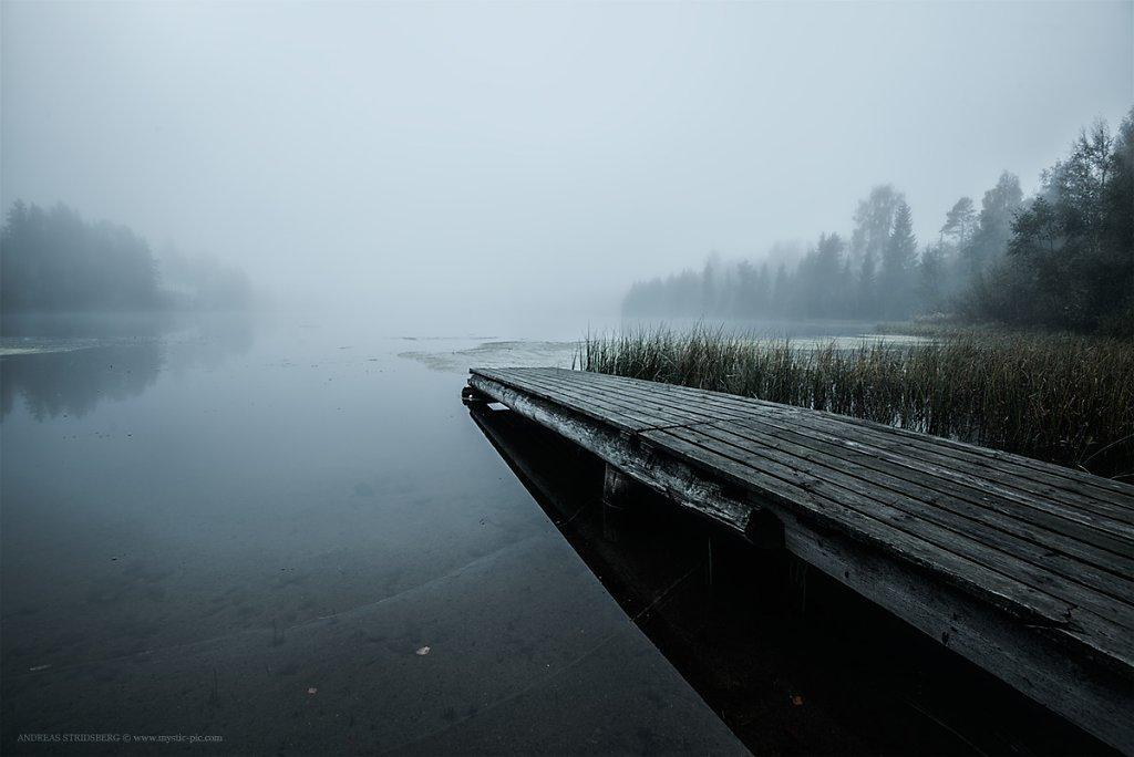 Fog-160927-028.jpg