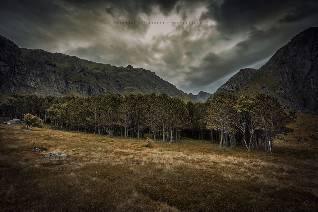 Lofoten-130704-379.jpg