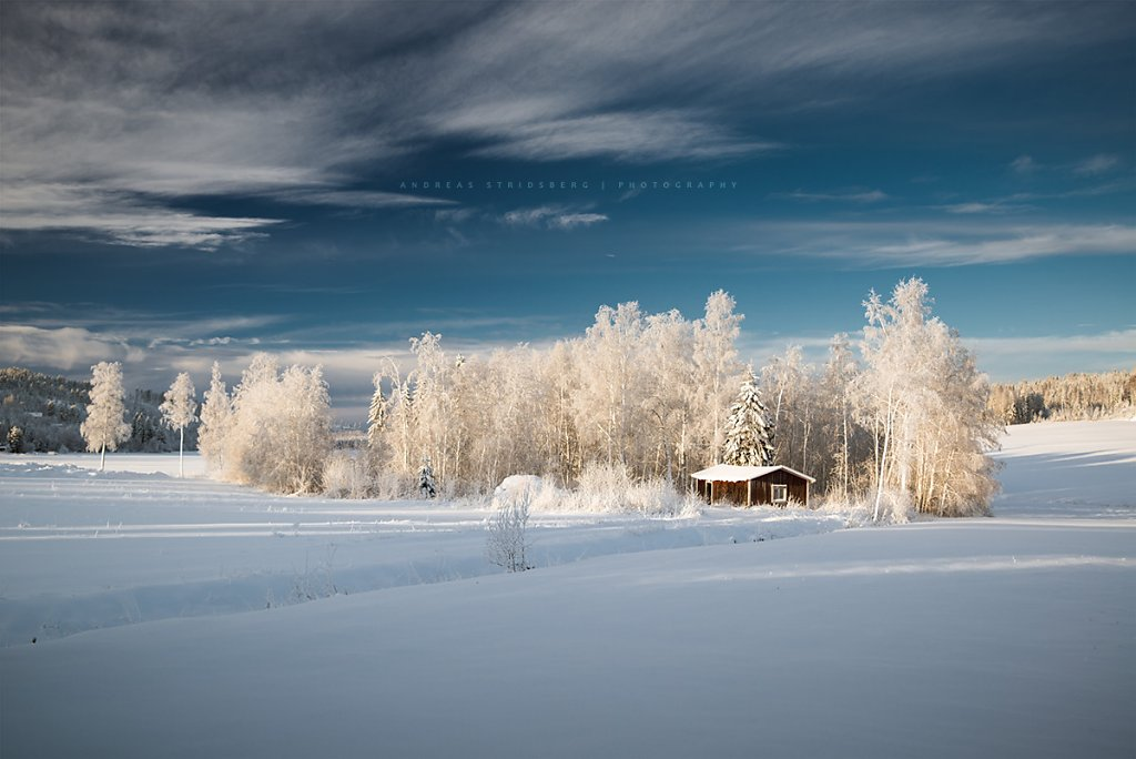 Nature-170114-002.jpg