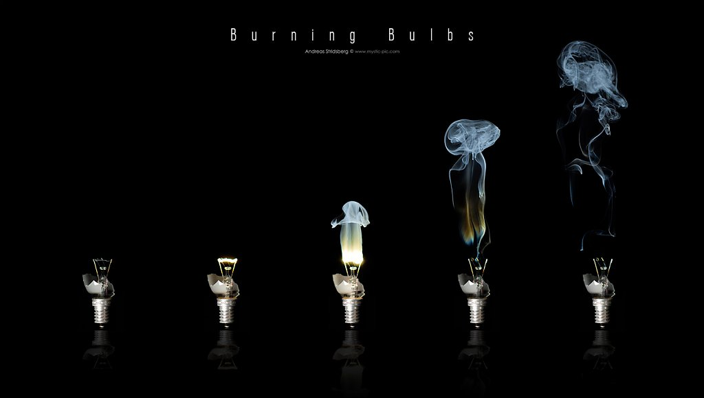 bulb-collage.jpg