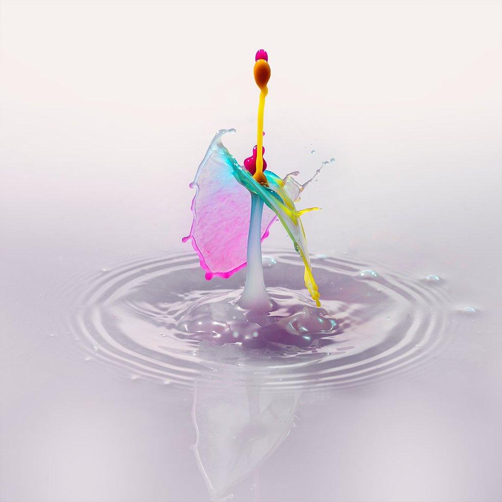 Splash-191106-138.jpg